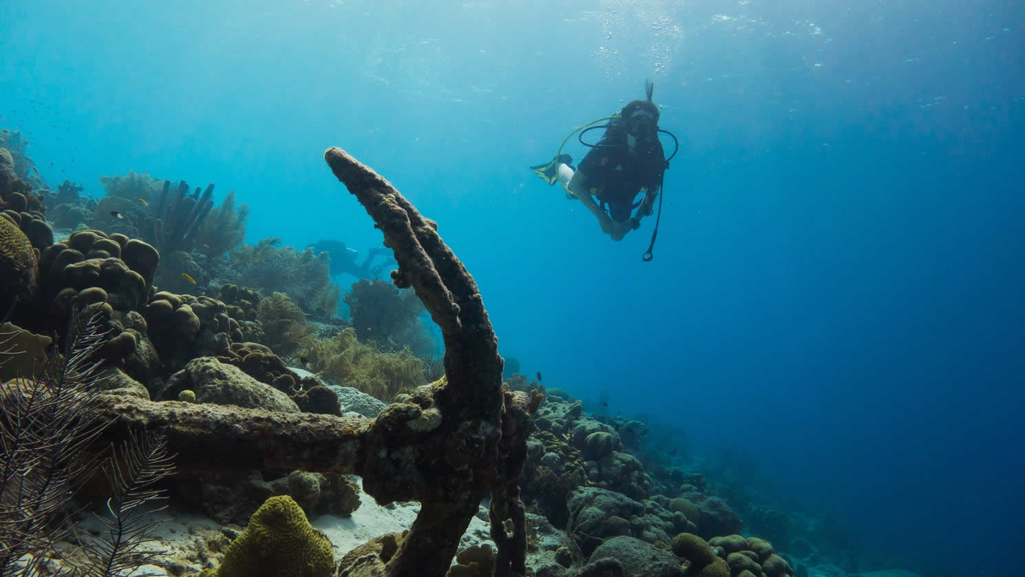 Best Places for Diving in 2018 HolidayTaxis